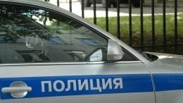 Видео: пятилетнюю девочку более суток разыскивают вНижегородской области