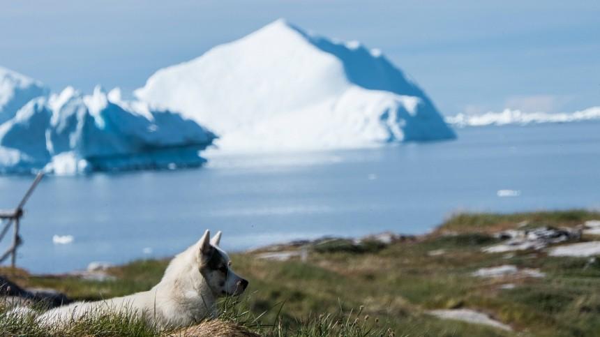 Королевская семья Дании сочла комплиментом идею опокупке Гренландии