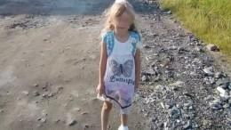 Пропавшая влесах Нижегородской области девочка найдена живой спустя три дня