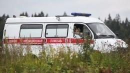 Состояние девочки, найденной влесу вНижегородской области, врачи оценили как тяжелое