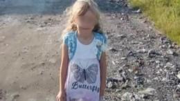 Настоящее чудо: Подробности спасения пропавшей вНижегородской области девочки
