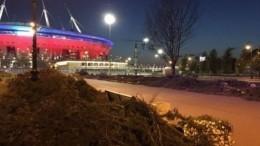 Кто ипочему срубил голубые ели перед «Газпром Ареной» вПетербурге