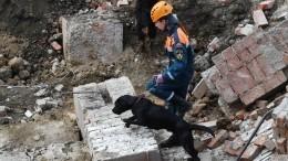 Число погибших при обрушении здания вНовосибирске возросло дотрех
