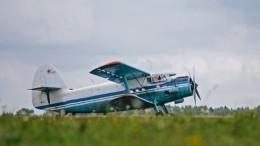 Самолет Ан-2 совершил жесткую посадку наполе сподсолнухами вКурской области