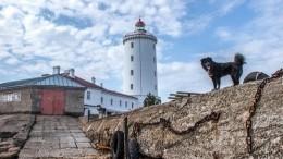 Три века настраже Петербурга: Толбухинский маяк отмечает юбилей