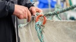 ВПриамурье ищут браконьеров, которые поймали рыбу изКрасной книги