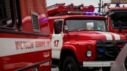 Десятки машин экстренных служб встречают рейс изПетербурга в«Кольцово»