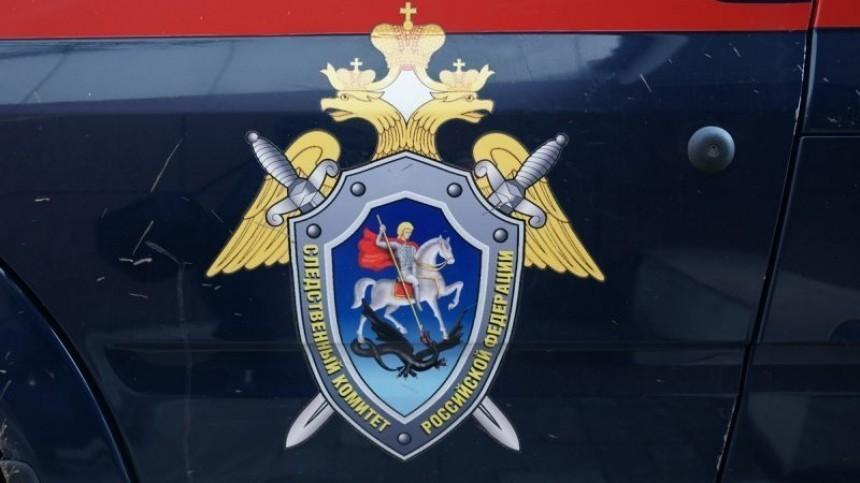 СКРФпросит отпустить Жукова иФомина под домашний арест