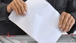 Пиотровский, Герелло иСемак проголосовали навыборах губернатора Петербурга