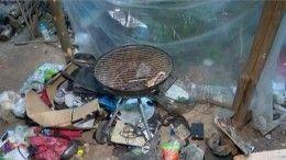 Видео: Как выглядит хижина, вкоторой жил подозреваемый внападении наЭллу Памфилову