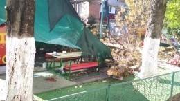 ВКраснодаре намалышей ивоспитательницу рухнуло дерево