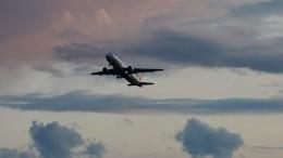 Стая диких гусей прервала полет Boeing-737 вШотландии