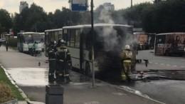 Очевидцы бросились тушить загоревшуюся наюге Петербурга маршрутку