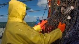 Более 250 нелегальных рыбаков изКНДР задержаны вПриморье