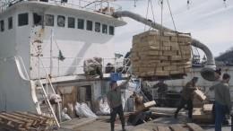 МИД РФвыразил озабоченность из-за нападения нароссиян вЯпонском море