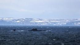 Forbes: Ракеты «Циркон» обеспечат ВМФ РФстратегическое преимущество над ВМС США иВеликобритании