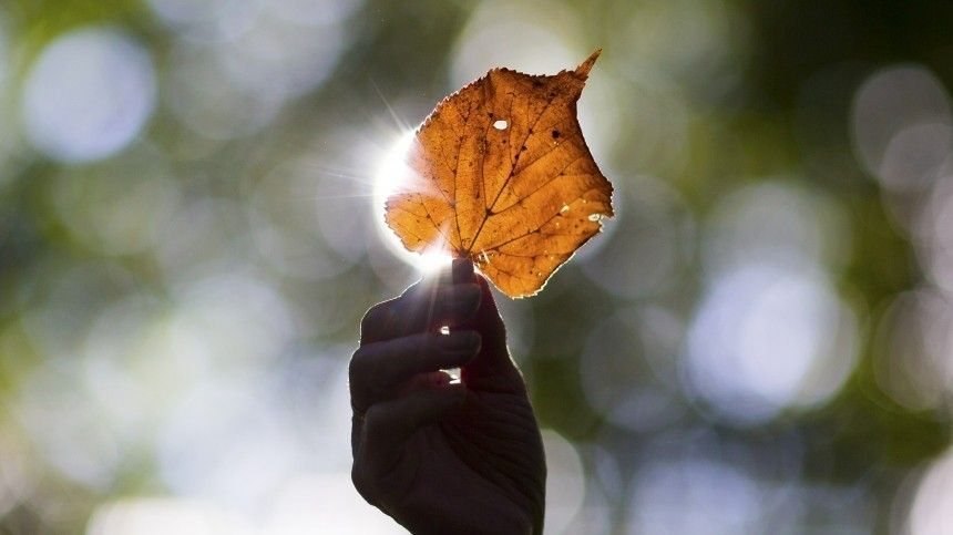 День осеннего равноденствия— как привлечь удачу иденьги