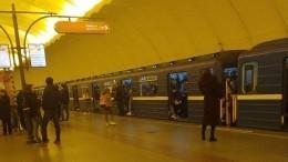 Движение на4-й линии петербургского метрополитена приостановлено