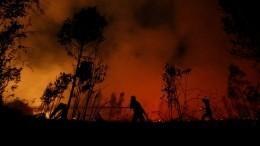 Видео: Масштабные лесные пожары терзают Индонезию