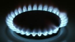 Россия ненамерена расширять список поставщиков газа наУкраину