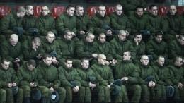 Российских военных начнут пускать вцирк бесплатно