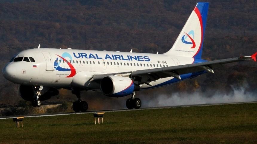 Самолет А-319 «Уральских авиалиний» столкнулся сптицами при взлете изМосквы