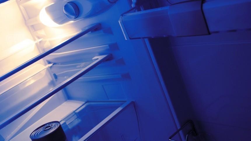 Специалисты нашли холодильник, откоторого шел ток кбатареям вжилом доме вВоронеже