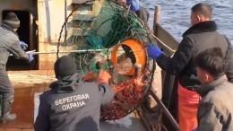 Пограничники задержали еще 87 браконьеров изКНДР вЯпонском море