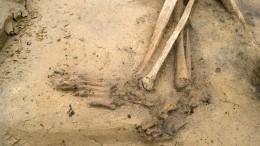 При строительстве супермаркета вАлтайском крае нашли человеческие скелеты
