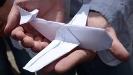 Фейк про детские самолетики: ВКрыму оценили украинскую новость про ихбеспилотники над Армянском