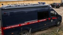 СКРФопубликовал допрос подозреваемого вубийстве девочки вСаратове