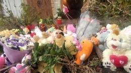 ВСаратове продолжается расследование убийства девятилетней девочки