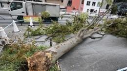 Тысячи домов без света, отменены авиарейсы: Японии угрожает тайфун «Хагибис»