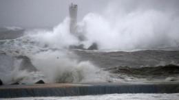 Судно под флагом Панамы затонуло близ Токио из-за тайфуна «Хагибис»
