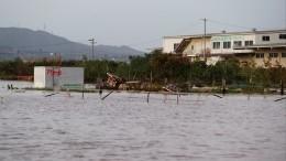 Число жертв тайфуна «Хагибис» вЯпонии превысило 30 человек