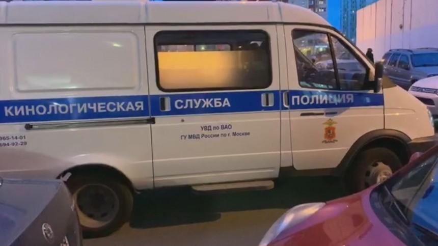 Девятилетняя девочка напугала жителей подмосковной Балашихи своим исчезновением