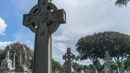 Видео: ирландец дослез рассмешил родственников насобственных похоронах