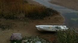 Впервые за55лет! Чудское озеро награни исчезновения из-за обмеления