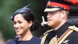 Принц Гарри иМеган Маркл повезут пятимесячного сына изЮжной Африки вСША