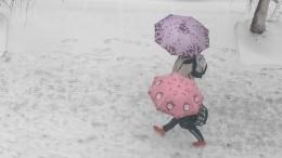 Россию накрыли сильнейшие снегопады