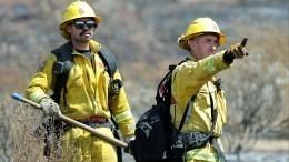 Лесные пожары подбираются кдомам Бена Аффлека Мэтта Дэймона иСофии Ричи