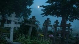 ВКурской области кладбище стремительно приблизилось кдому пенсионерки