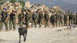 Курды начали отвод своих сил отграницы сТурцией