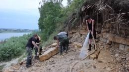 Скелет древнего «ухмыляющегося» крокодила обнаружен вреспублике Коми— видео