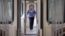 Сломанный состав остановил движение насиней ветке петербургского метрополитена