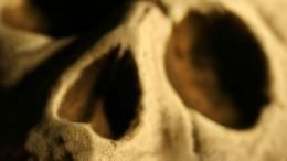 Скелет человека обнаружен при раскопках вцентре Москвы