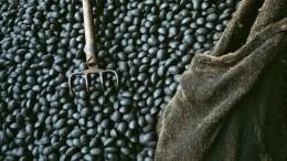 Украине пригрозили сильным экономическим ударом из-за российского угля