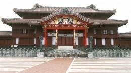 Древний замок, входящий всписок Всемирного наследия, полыхает вЯпонии