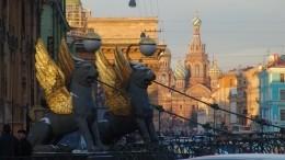 Студенты встали назащиту грифонов Банковского моста вСанкт-Петербурге