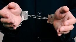 «Похищенный» Гриценко оказался задержан поделу омошенничестве